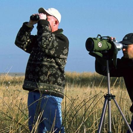 Iran Bird Watching Tour