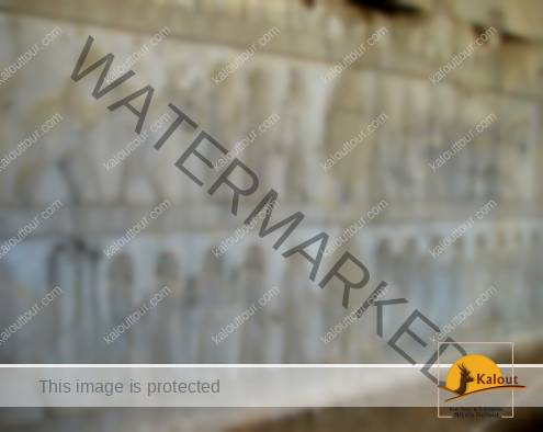 Rock Reliefs on the eastern wall of Apadana palace