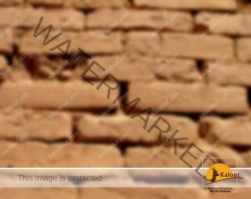 Bricks inscribed by cuneiform Script