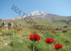 Damavand-Tour