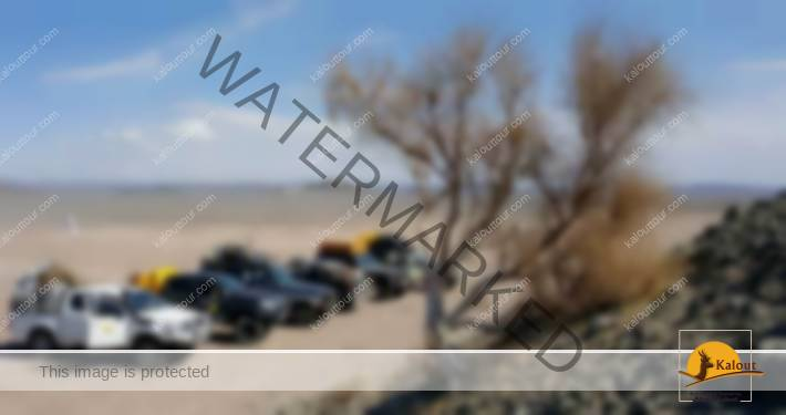 Iran-Desert-safari-Tour Iran travel agency