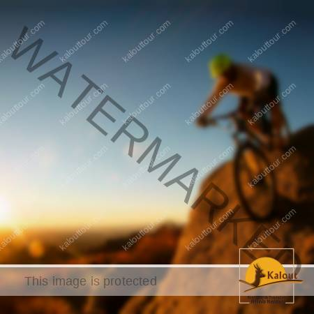 Bicycle_Mountain_Bike1-450x450-1 Iran tours