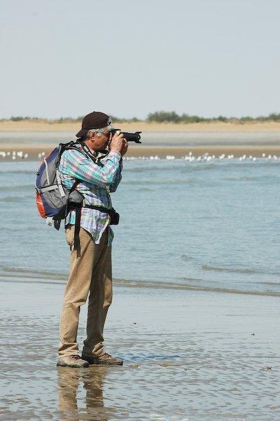 DSC_0873 Iran Birdwatching Tour