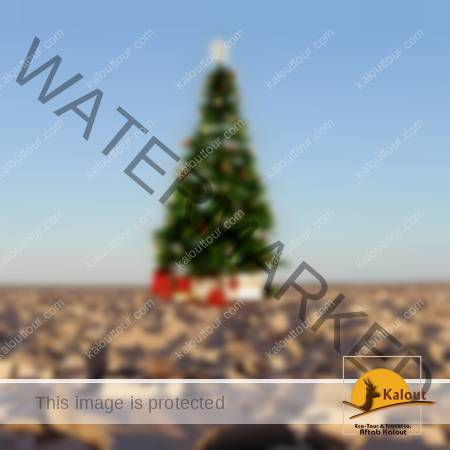 X-mas-lut-Desert-450x450-1-450x450 X-Mas Holiday Land Maranjab Desert