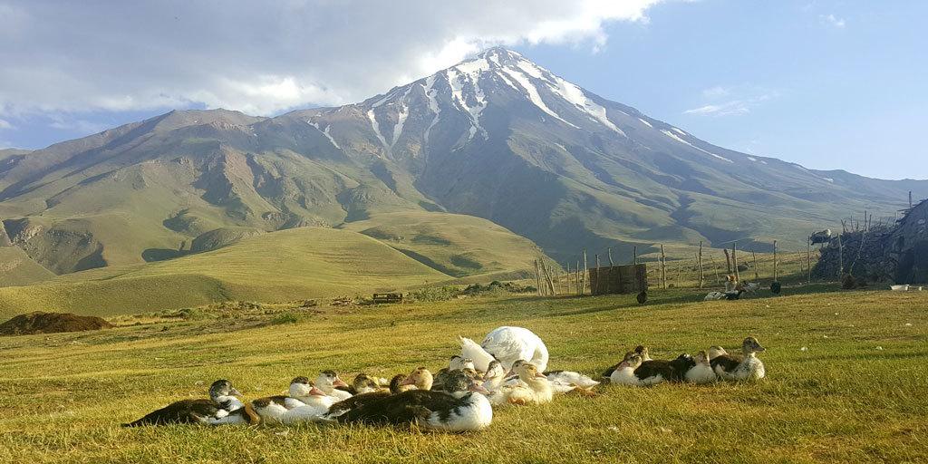 iran-damavand-Tour-nanda-2 Iran mountaineering tours   Nature & Nomads