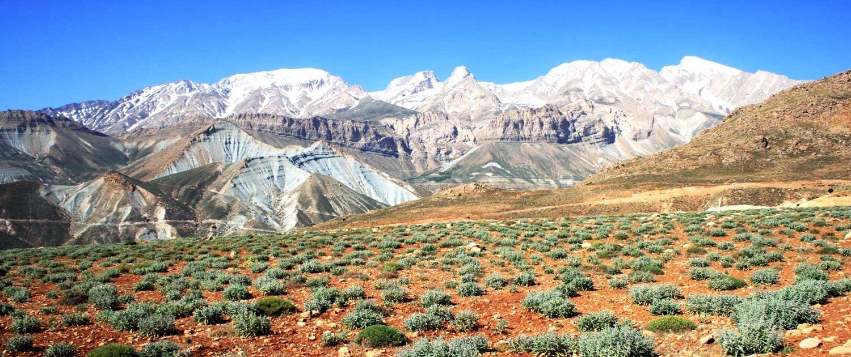 IMG_2061-1500x630 Dena Mountain   Iran Nomad Tour