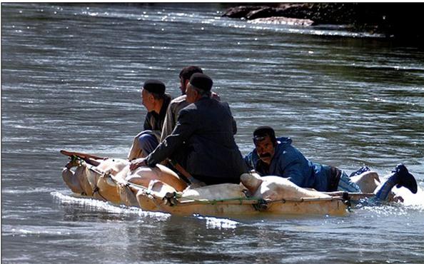 1484347432_391_rafting-in-iran-iran-travel-trip-to-iran Rafting in Iran - IRAN TRAVEL, TRIP TO IRAN News