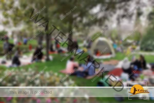 1484348869_258_sizdeh-bedar-13th-day-of-norouz-iran-nature-day Sizdeh Bedar ~ 13th Day of Norouz Iran Nature Day Iran Tradition