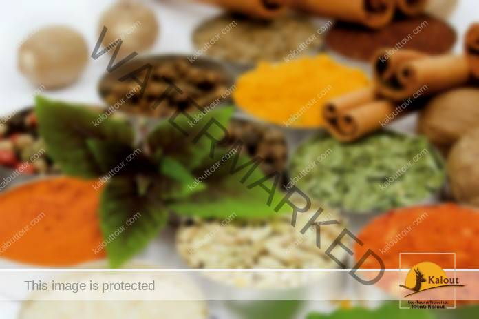 foreign-tourists-in-iranian-traditional-medicine-centres Foreign Tourists in Iranian Traditional Medicine Centres News