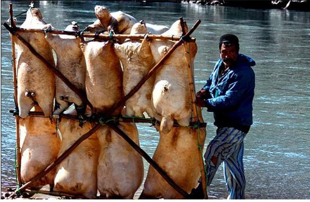 rafting-in-iran-iran-travel-trip-to-iran Rafting in Iran - IRAN TRAVEL, TRIP TO IRAN News