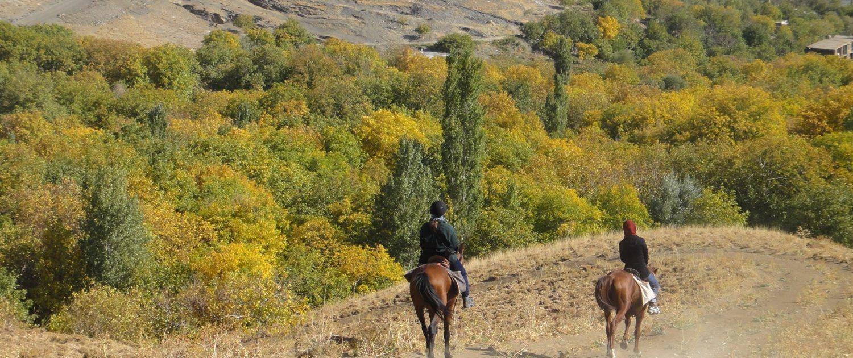 DSC01409-1500x630 Iran Horseback Riding Tour