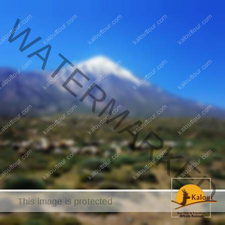20170721_115422-450x450 North Face Damavand