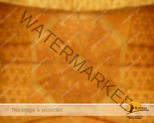 soltaniyeh-plasterwork-001-495x394 A Short Visit to Soltaniyeh Mausoleum Islamic Arts Islamic Architecture Iranian Architecture Burial Structure