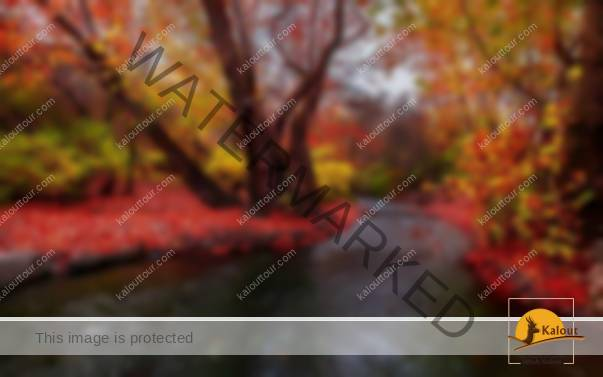 1502539422_193_iran-a-four-seasons-land-with-special-natural-features Iran a four seasons land with special natural features special seasons natural Land Iran features